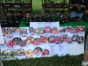 Sign showing the unusual number and variety of tomato types available.