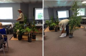 On Sept. 17 2014, Paul Morrow from HH Bamboo gave an interesting talk on the different types and uses of bamboo.
